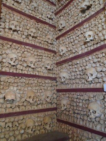 Des os, des os, encore des os...