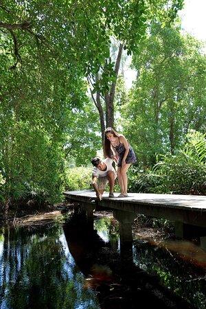 Wetland Walk