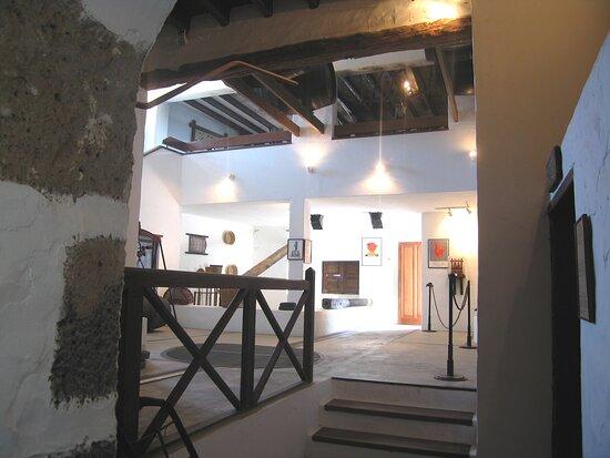 Museo del Vino El Grifo