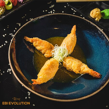 Ebi Evolution