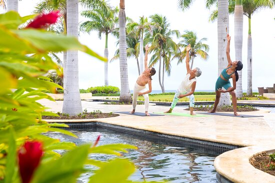 Yoga, wellbeing & fitness