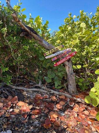 Cardona Island: perfeccion