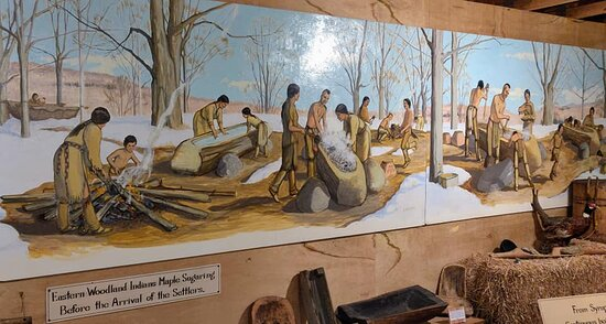 Woodland native mural.