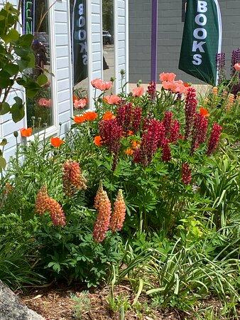 We love our garden!