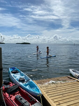 Excellent paddle boarding experience