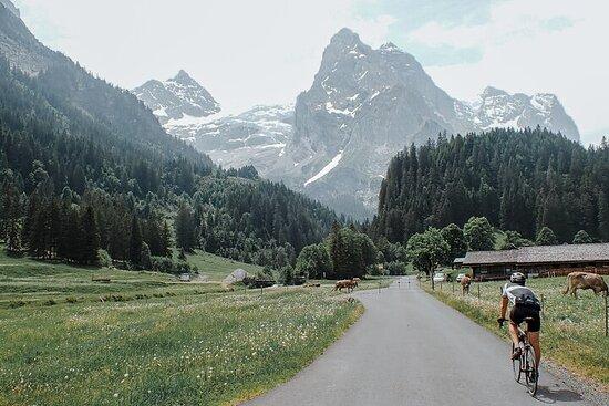 Tour à vélo sur route Monumentalps: Grosse Scheidegg d'Interlaken