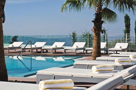 Pool Palms and Sunbeds