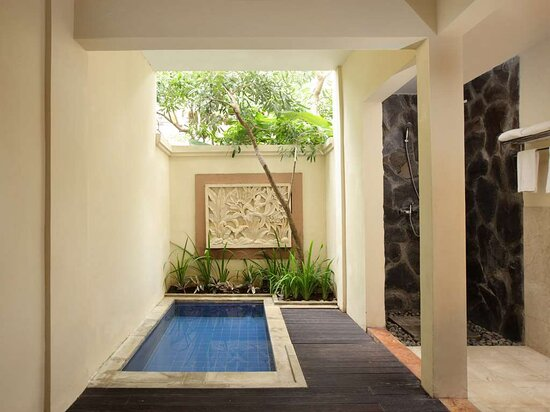 Deluxe Bedroom with Plunge Pool