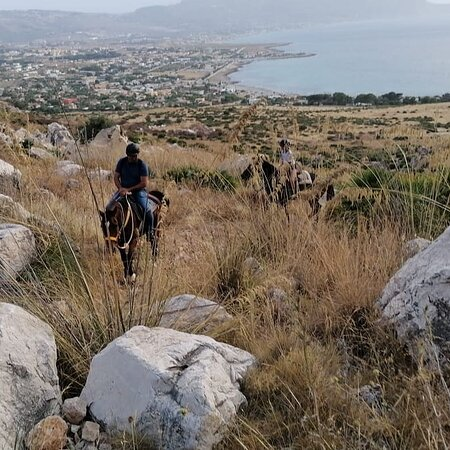 Cofano Trekking Horse Riding Sicily Occidental