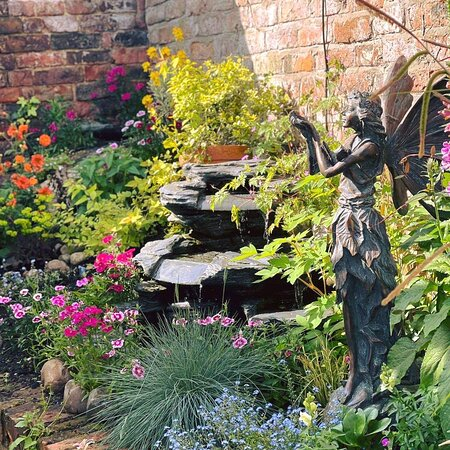 Courtyard in bloom