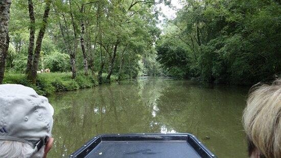 La promenade guidée en barque