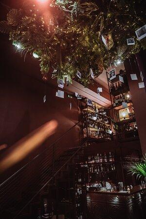 Interior Design and wine options