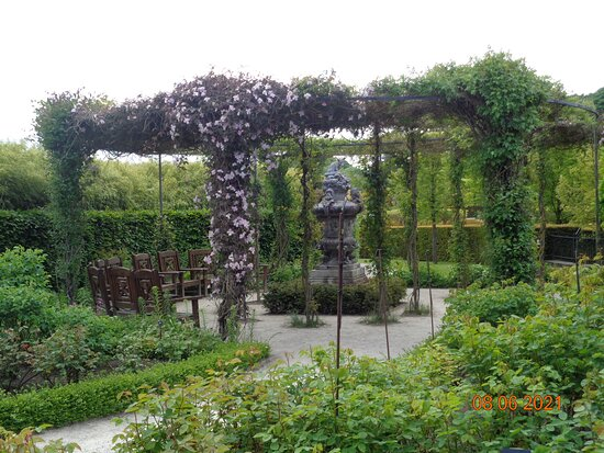 The Alnwick Garden Admission Ticket: Clematis in the rose garden