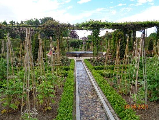 The Alnwick Garden Admission Ticket: Ornamental garden