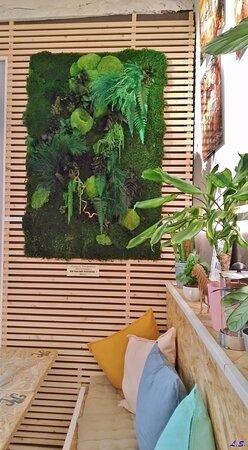 """Saint-Maximin-la-Sainte-Baume, Francia: Effet garanti, que ce décor végétalisé, dans cette ambiance déjà très """"zen"""", chez Jay & Greg."""