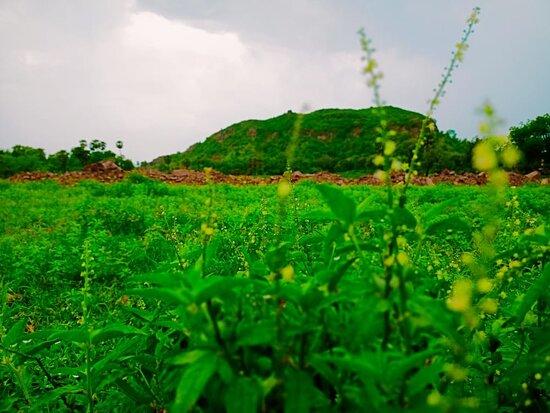 Kaimur District, Ινδία: Usman Kothi pahadi