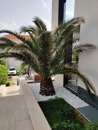 Csodálatos környezetben, modern stílusú, jól felszerelt szállás, profi konyhával, kedves házigazdákkal! ❤️