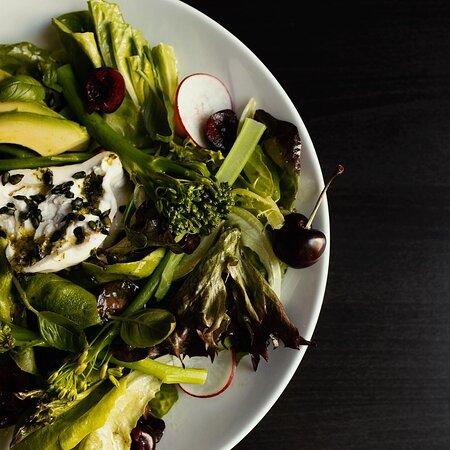 Homemade burrata salad