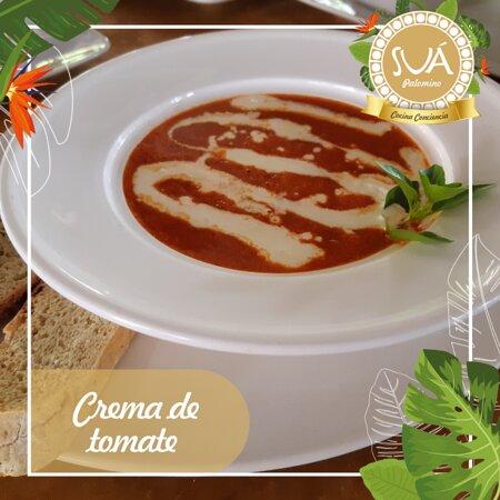 Crema de tomate: tomates frescos, aceite de oliva, crema de leche acompañada de pan de la casa.