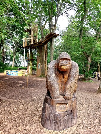 Carved Gorilla - Go Ape Coventry (02/Jul/21).