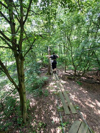 Hows your balance, find out at Go Ape Coventry (02/Jul/21).