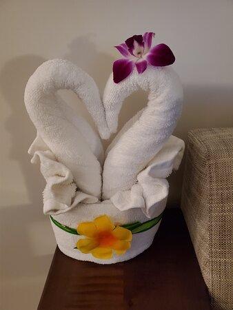 towel art to celebrate