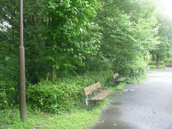Kashiwago Park