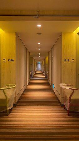 Corridor at level 12.