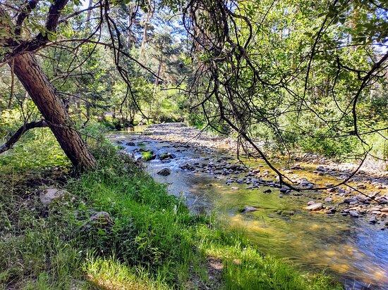 Eresma river 🏞️ royal fisheries route