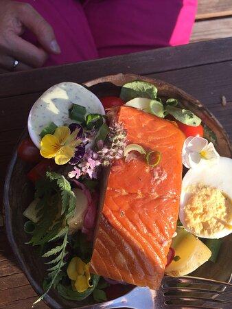 Salmon salad starter