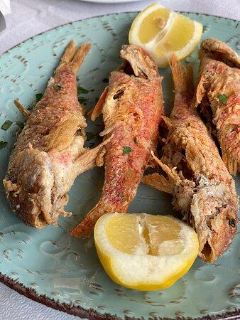 Fishtavern Vasilis