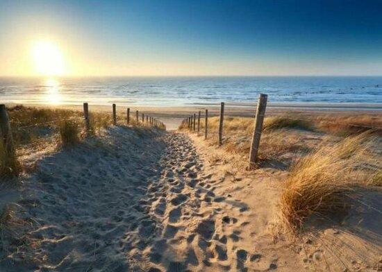 De LODGE ligt vlakbij het strand van Noordwijk