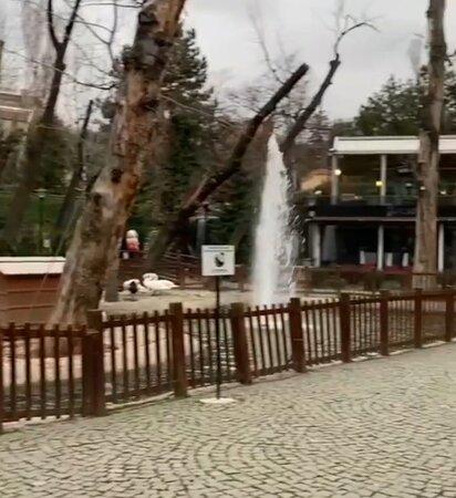 Kuğulu Park Tunalı Hilmi Caddesi