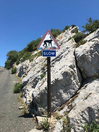 Фотография Гибралтар