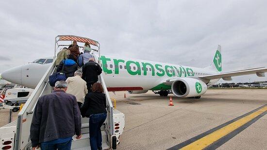 Transavia: Avion