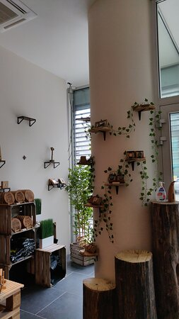 Brussels, Belgia: Goodbeerspa gift shop, entrance