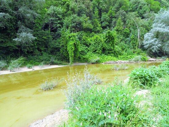 Le limacciose acque del Rio Grande