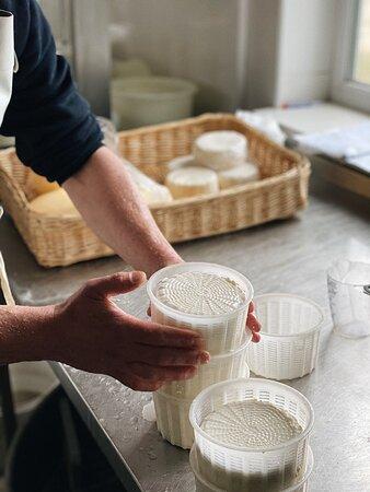 Создание сыров на местной сыроварне