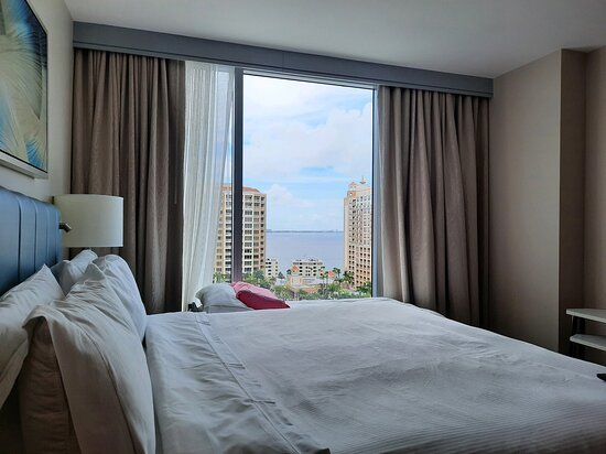 What a tremendous view  of the Sarasota Bay from the comfy King size bed.