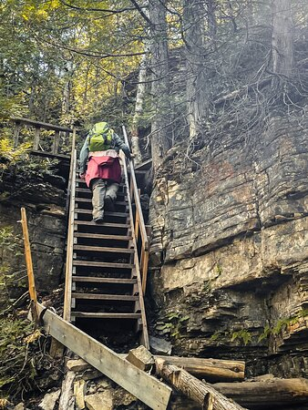 A steep, but safe, ladder on the Red Trail.