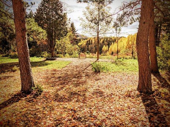 Nos immenses jardins accessibles pour vous ressourcer!  11 acres de terrain, tranquille à souhait!