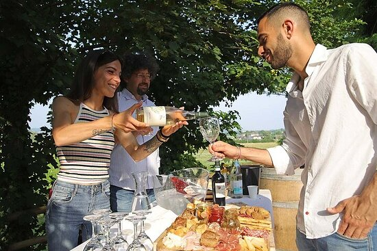Biodynamic Farm and Natural Wines Tasting in Lazise