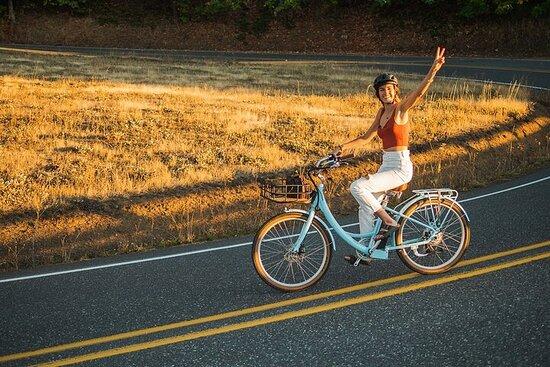 Location de vélo électrique - 1 heure