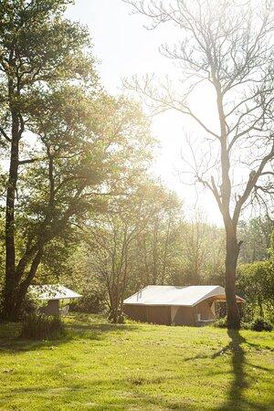 Les tentes sur parquet