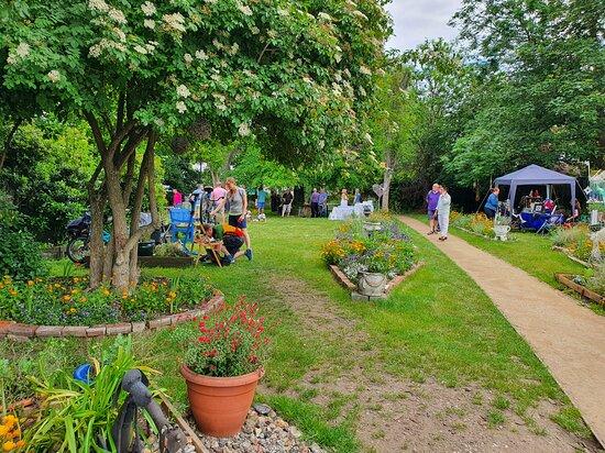 Hackbridge Community Garden
