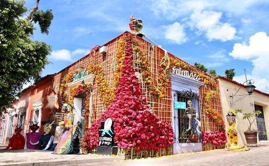 Oaxaca vous surprendra toujours, une des plus belles villes coloniales du Mexique où il fait bon vivre. Vous y passerez quelques jours lors de votre RoadTrip de Mexico à Cancun avec votre guide privé francophone privé.