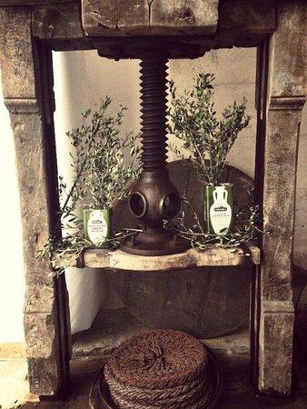 antico spremitoio di olive