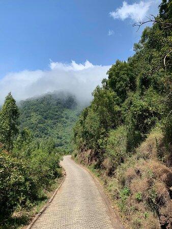 Ngorongoro game!