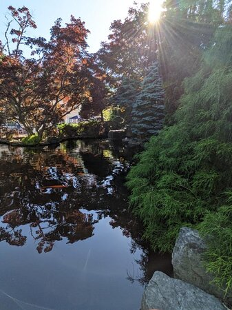 The Koi Pond on the grounds of Pleasant Bay Village Resort