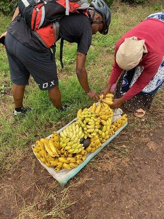 Chagga Villages in Mount Kilimanjaro Cycling Day Trip: Impromptu banana snack